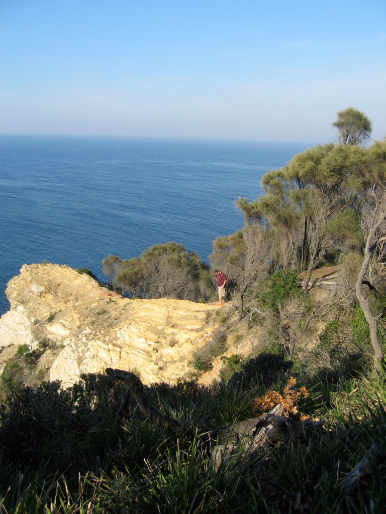 Here is an example of turbidite beds of the Adaminaby Group, exposed at the southeast end of Burrewarra Pt